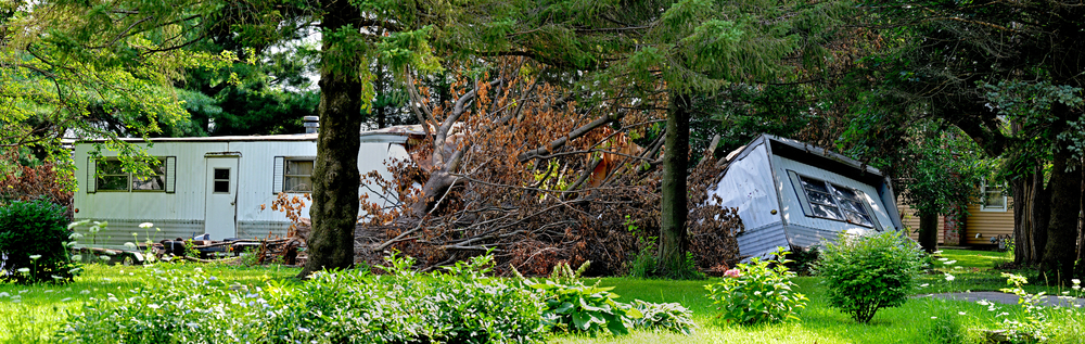 tree fallen on a mobile home